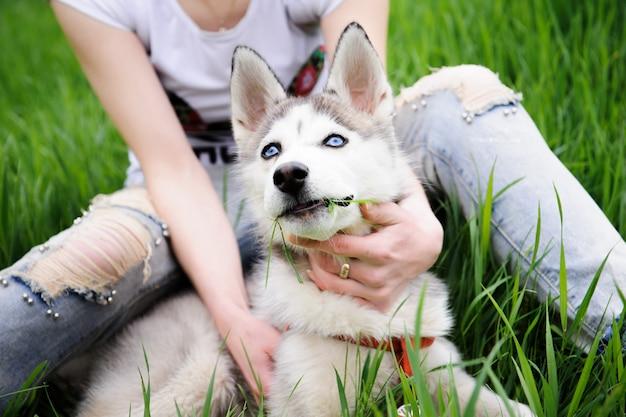 Девушка и ее собака хаски гуляя в парк.