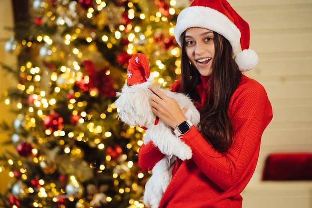女の子はクリスマスツリーで彼女の手に小さな犬を持っています