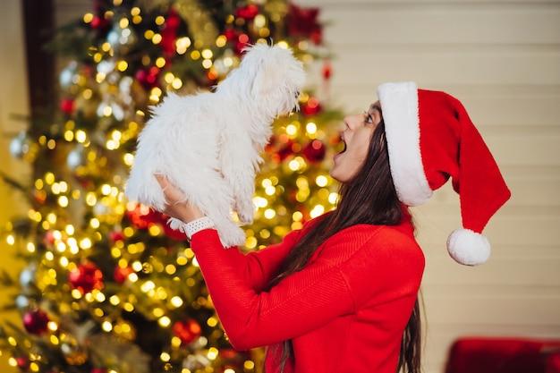 Девушка держит на руках собачку в новогоднюю ночь с другом.