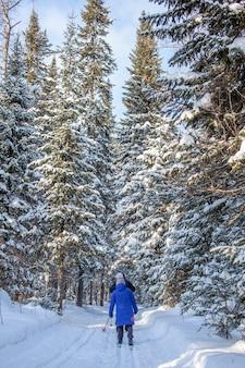 파란 재킷을 입은 소녀가 겨울에 눈 덮인 숲에서 스키를 타러 간다. 뒤에서 본 모습.