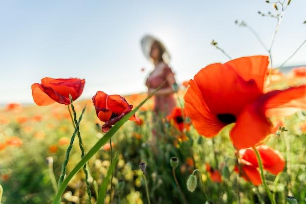 Девушка в маковом поле.