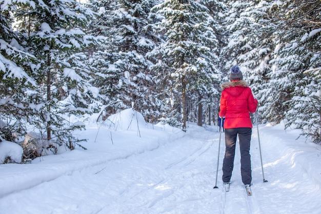 赤いジャケットを着た女の子が冬に雪に覆われた森でスキーに行きます。後ろからの眺め。木々の間のスキーと雪の背景。