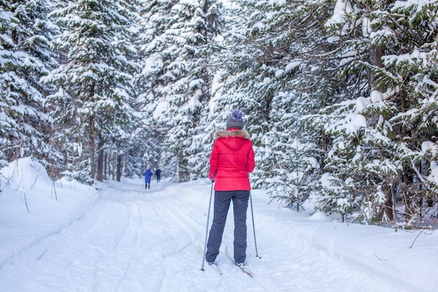 빨간 재킷을 입은 소녀가 겨울에 눈 덮인 숲에서 스키를 타러 간다. 뒤에서 본 모습.
