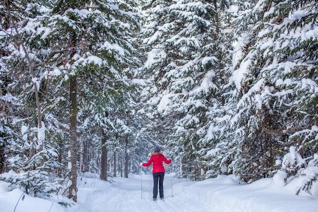 빨간 재킷을 입은 소녀가 겨울에 눈 덮인 숲에서 스키를 타러 간다.
