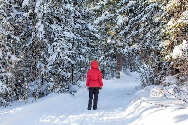 冬の日、赤い上着を着た女の子が雪に覆われた森の中を歩きます。背面図。美しい冬の自然を背景にした男