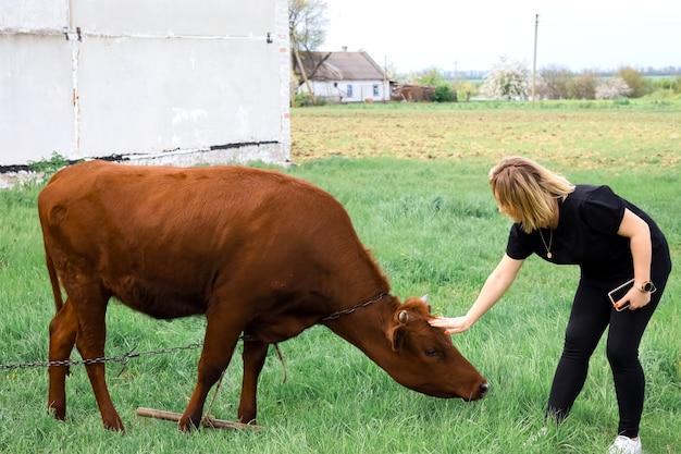 黒い服を着た女の子が雄牛の頭を撫でようとする