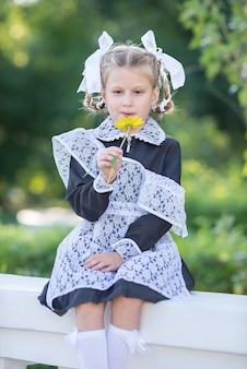 На заборе летом сидит девочка с косичками и цветком в руке.