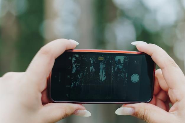 女の子が携帯電話で夏の森の写真を撮る