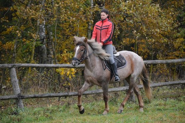 女の子が若い馬を訓練する