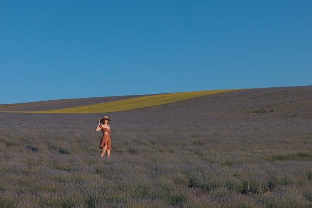 女の子がラベンダー畑を歩く