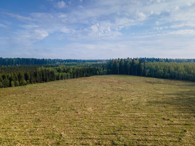 ドローンからの鳥瞰図から見た空き地と森の端。屋外。