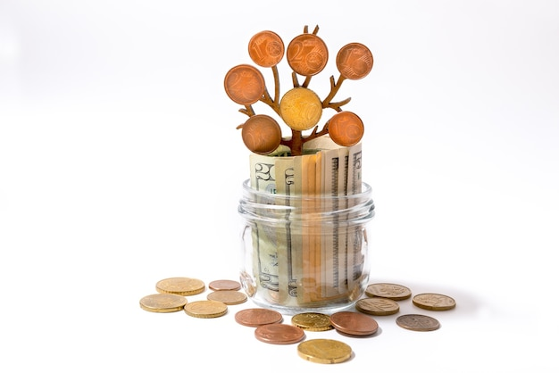 지폐가 들어있는 유리 항아리와 나뭇 가지에 동전이있는 성장하는 나무. 돈 성장의 투자 개념입니다.