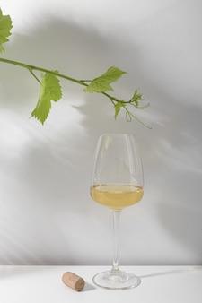 화이트 와인 한 잔과 흰색 테이블에 포도 가지. 밝은 배경.