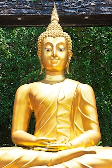 Золотая статуя будды в саду, бангкок, таиланд