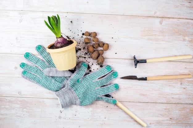 Зеленое растение для пересадки цветочного горшка керамзит садовый инвентарь и перчатки