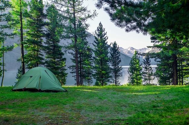 아름 다운 호수 백그라운드에서 숲에서 녹색 텐트. 소나무 숲 아래 캠핑 및 텐트
