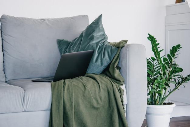 Серый диван в светлой комнате в скандинавском стиле с зелеными подушками и зеленым пледом