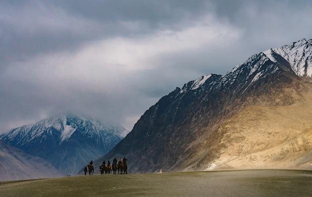 Группе людей нравится кататься на верблюде по песчаной дюне в хундер