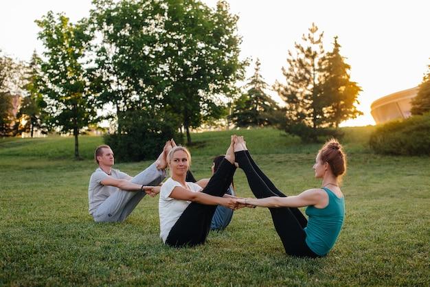 한 무리의 사람들이 일몰 동안 공원에서 쌍 요가 운동을 수행합니다.