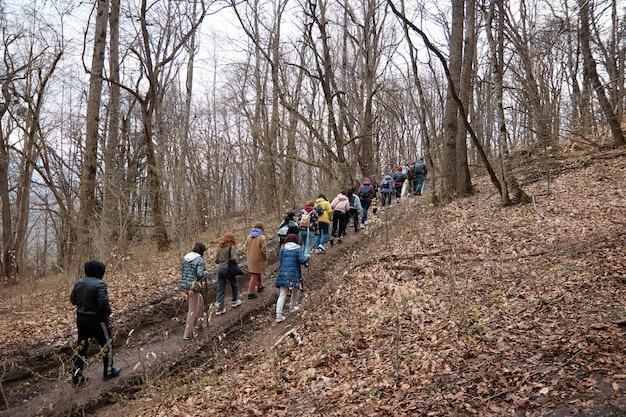 Группа туристов поднимается по лесной дороге в горы, осень, лес, деревья.