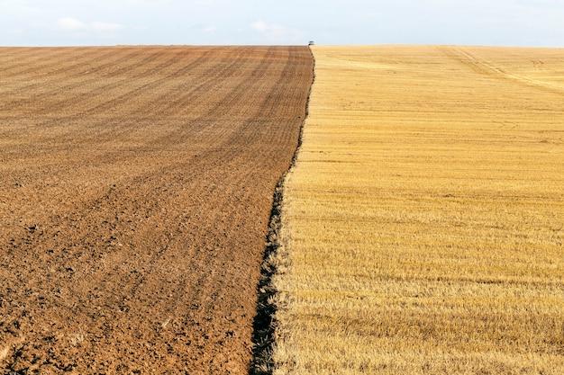 밀을 수확하고 남은 그루터기를 쟁기하는 반 경작지