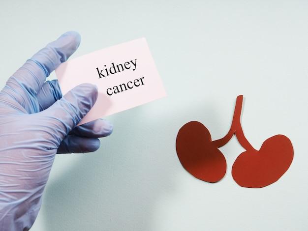 Рука в медицинской перчатке держит табличку с надписью «рак почки» на фоне силуэта почек.