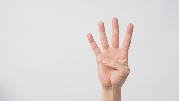 4개의 손가락이 위쪽을 가리키는 손 기호는 4개를 의미합니다. 흰색 배경에 적용됩니다.