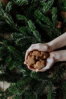 モミの枝を背景に子供の手のひらに一握りのクッキー。