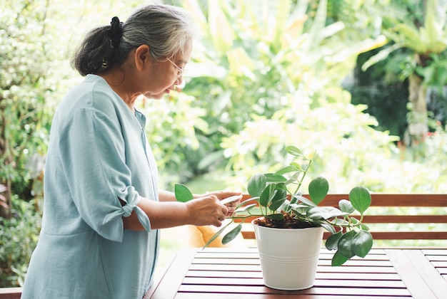 幸せで笑顔のアジアの老婆は、家で引退した後、趣味のために植えています。
