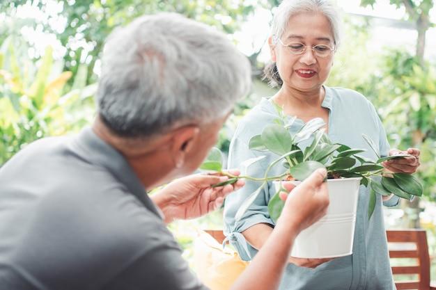 행복하고 웃는 아시아 노인 여성이 남편과 은퇴 후 취미를 위해 심고 있습니다.