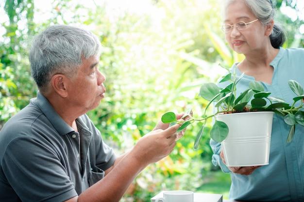 幸せで笑顔のアジアの老婆が引退後の趣味のために植えています