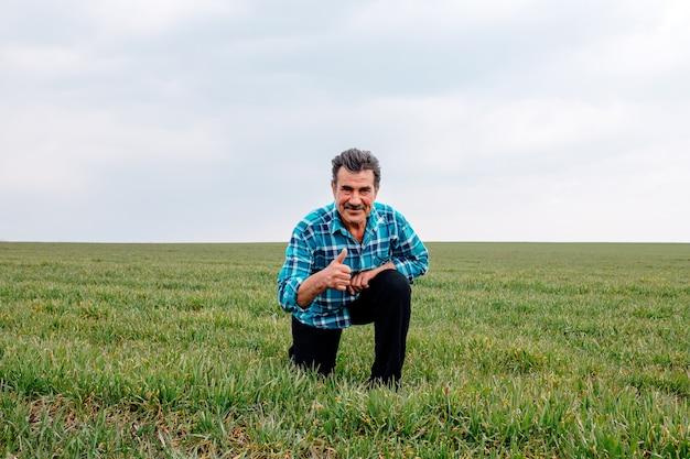 Счастливый старший фермер становится на колени в зеленом пшеничном поле, касается пшеницы рукой, рассматривает яровой урожай.