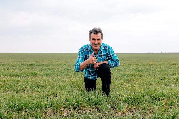 Счастливый старший фермер преклоняет колени в зеленом пшеничном поле, касается пшеницы рукой,