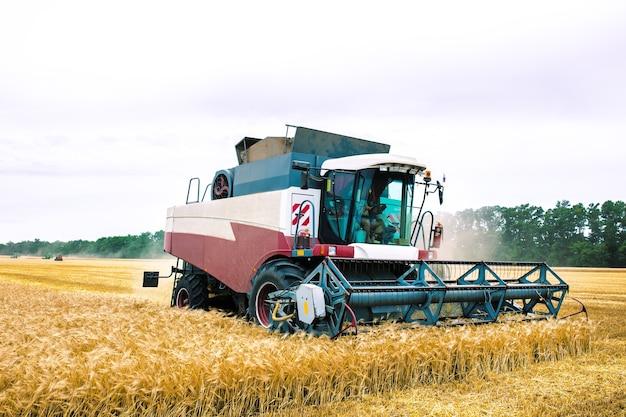 エアコン付きのキャビンを備えた収穫機は、農場からオーツ麦を収集します。