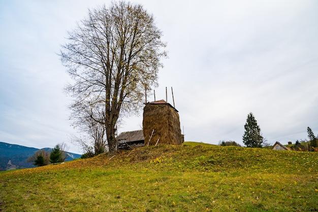 Стог сена стоит у дерева без листьев на фоне долины с лесами и деревней.