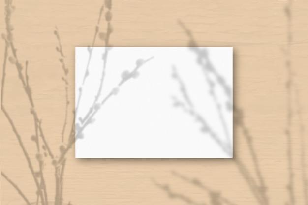Горизонтальный лист белой текстурированной бумаги формата а4 на фоне стены цвета охры. наложение мокапа с тенями растений. естественный свет отбрасывает тени от веток ивы. горизонтальная ориентация