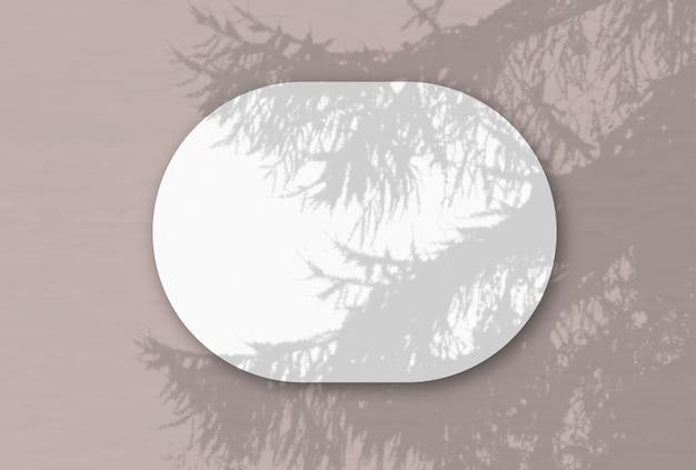 Горизонтальный овальный лист белой фактурной бумаги на розовой стене