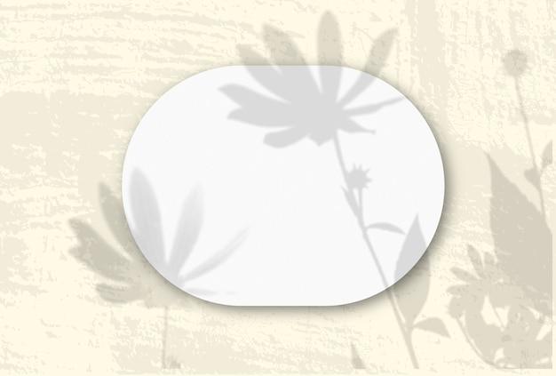 Горизонтальный овальный лист белой фактурной бумаги на желтой стене