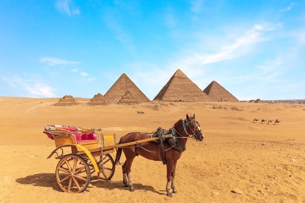 エジプトのギザの大ピラミッドの前にカートを持った馬。