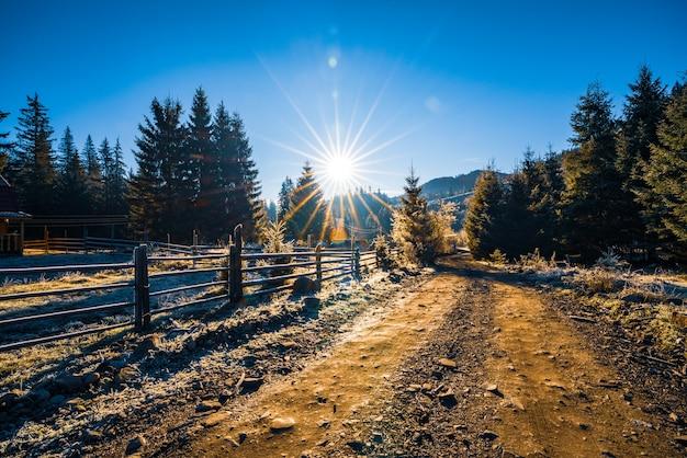 Дом на опушке леса в окружении вечнозеленых деревьев на фоне яркого солнца и необычных карпатских холмов.