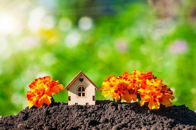 지상에 있는 친환경적인 생활의 개념인 태양 광선에 흐릿한 녹색 배경에 노란 꽃 메리골드로 둘러싸인 지상의 집