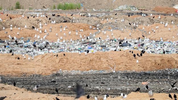 Огромная свалка для вывоза мусора