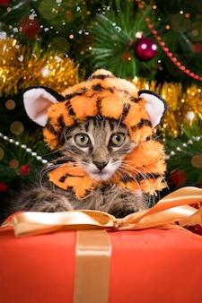 크리스마스 트리와 선물 근처에 호랑이 의상을 입은 고양이.