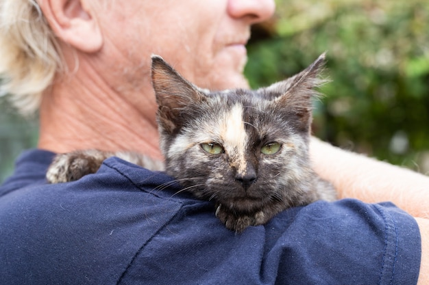Котенок с полосой на носу на плече взрослого мужчины. любовь к домашним животным.