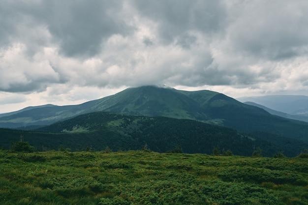 Пейзаж горной местности, покрытой травой и камнями. облачно горный пейзаж. лес покрыт туманом и облаками.