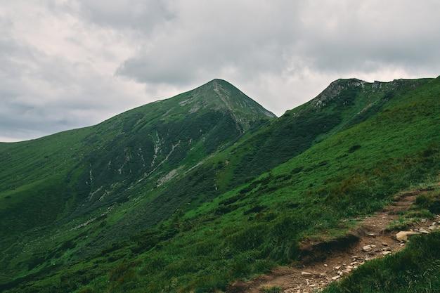 Пейзаж горной местности, покрытой травой и камнями. облачно горный пейзаж.