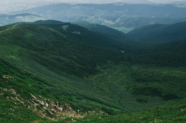 Пейзаж горной местности, покрытой травой и камнями. горы покрыты туманом и облаками. пейзаж леса, покрытого туманом.