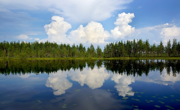 大きな雲と森が湖、パノラマに反映されています