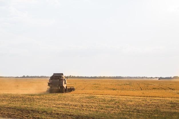 大型コンバインは穀物の収穫に使用されます