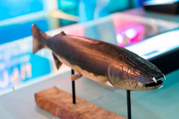 나무 받침대에 장착된 대형 물고기 모형.